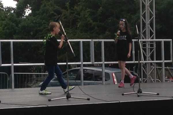 Pitshanger Party in the Park 2016 - image 5